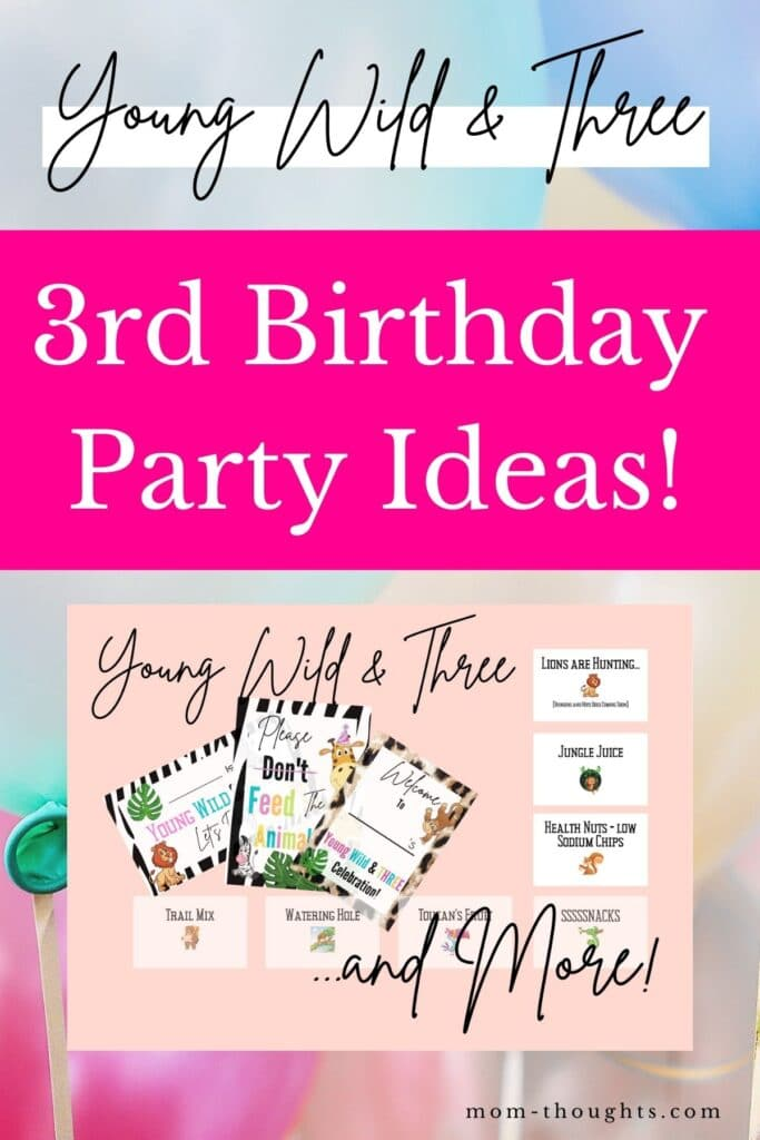 """This image has balloons in the background with text overlay that says """"young wild and three. 3rd birthday party ideas!"""""""