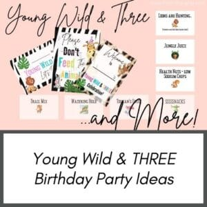 Young Wild and Three Birthday Party Ideas for toddlers